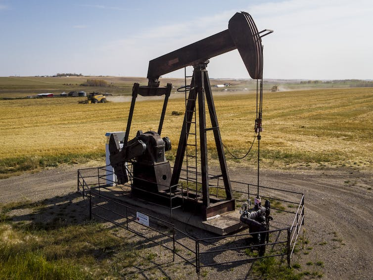 A pumpjack is seen surrounded by a golden wheat field.