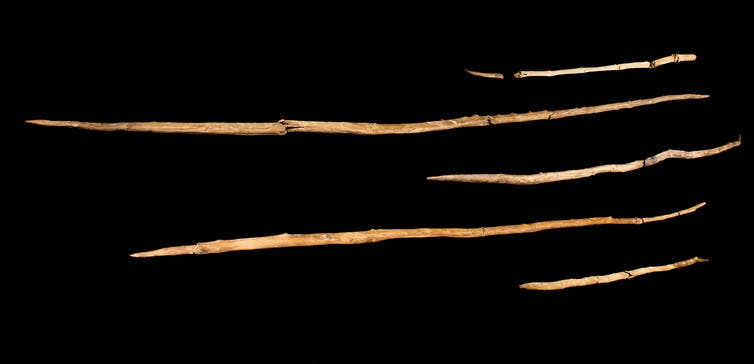 Collection of prehistoric javelins.