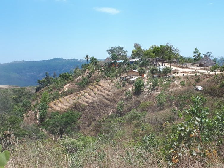 A town with a terraced hillside.