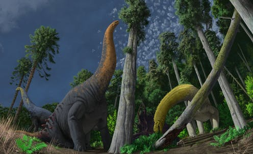 Reconstruction of three sauropod species feeding on different vegetation at Lightning Ridge.