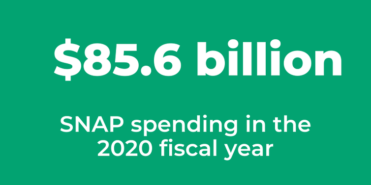 SNAP benefits cost a total of $85.6B in the 2020 fiscal year amid heightened US poverty and unemployment