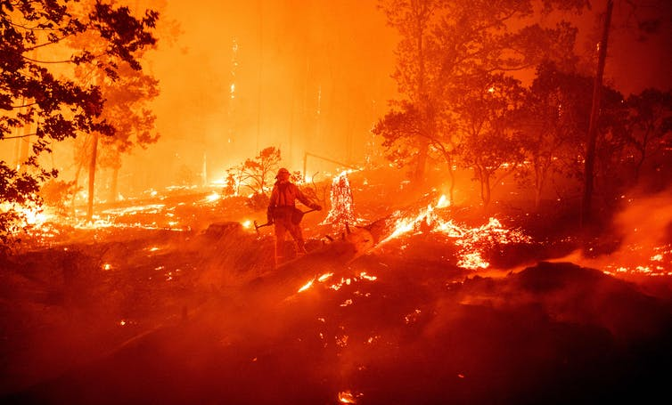 Firefighter standing in forest surrounded by fire