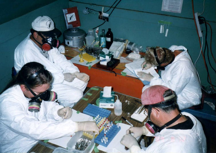 scientists studying archived specimens
