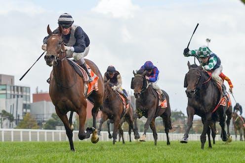 Jockeys and horses running in a race.