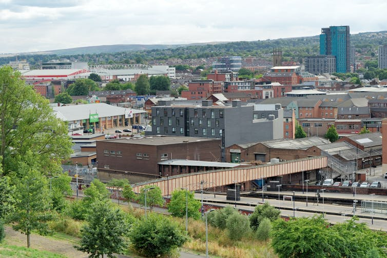 Buildings of Sheffield seen from a tree-covered hill.