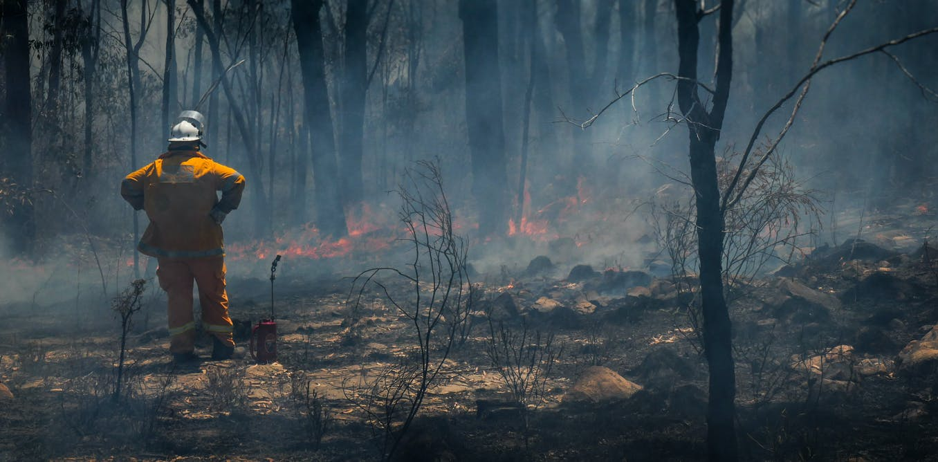 The bushfire royal commission sets a strong precedent for change. Now we need politics to follow