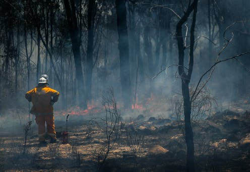 Firefighter looks over burnt blackened forest