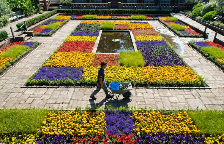 A man with a wheelbarrow in a colourful garden.