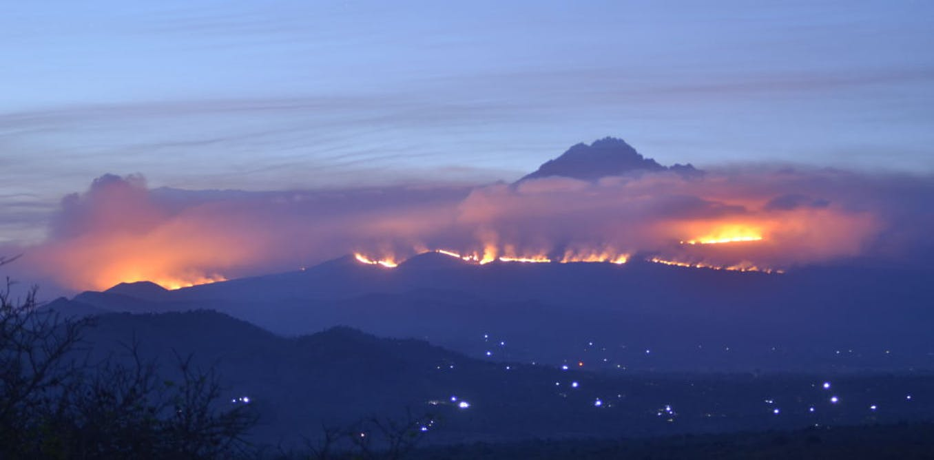 Fires shaped Mount Kilimanjaro's unique environment. Now they threaten it