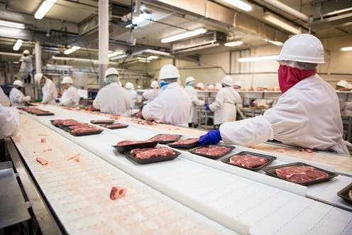 Workers on a meat processing factory line.
