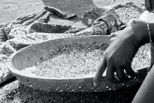 A woman's hand with a bracelet holds a woven basket containing grains, sifting it over a patterned cloth in order to separate the chaff.