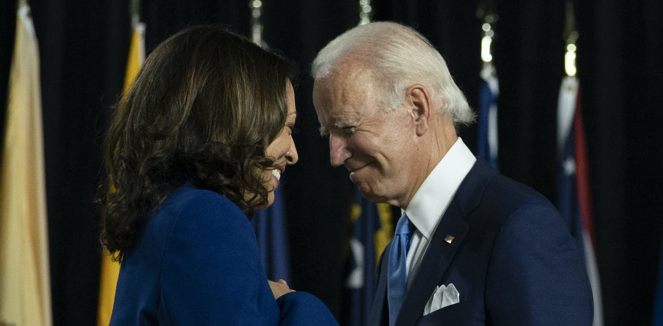 Joe Biden wins the election, and now has to fight the one thing Americans agree on: the nations deep division