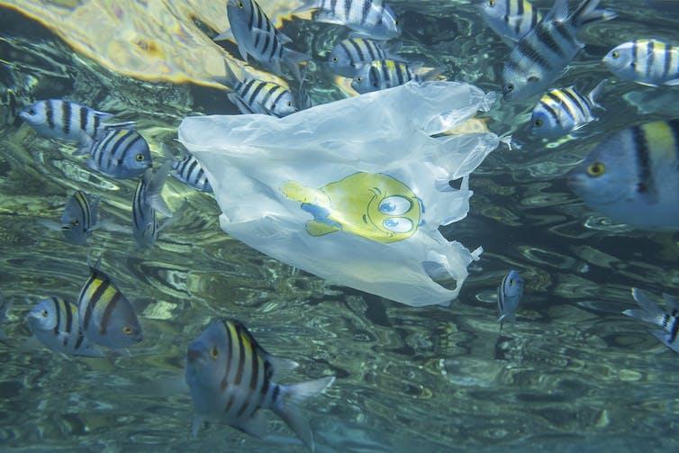 Sac plastique flottant dans l'océan