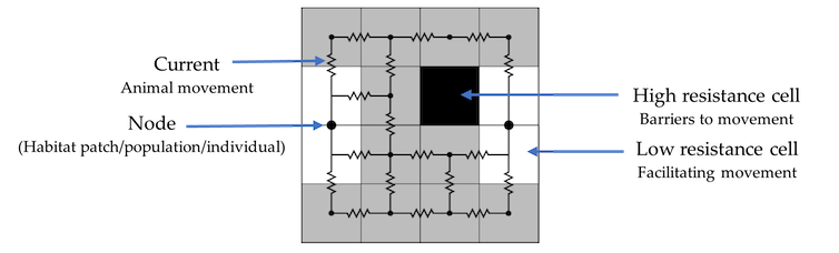 An example grid square map depicting areas of high and low resistance to movement.
