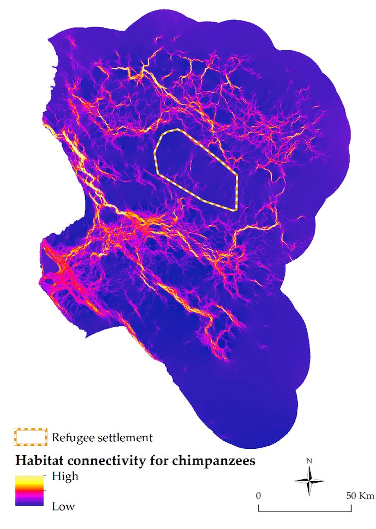 Un mapa por colores destaca las zonas de alta conectividad de hábitats de chimpancés en la zona occidental de Tanzania.