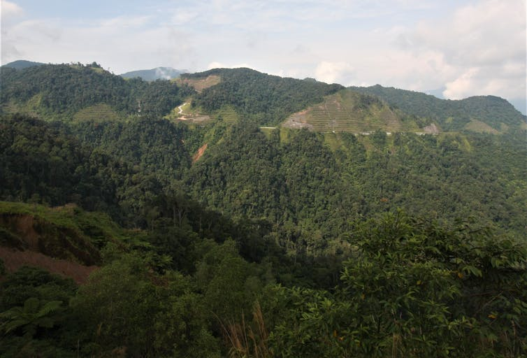 Forested hills with denuded patches in the tropics.