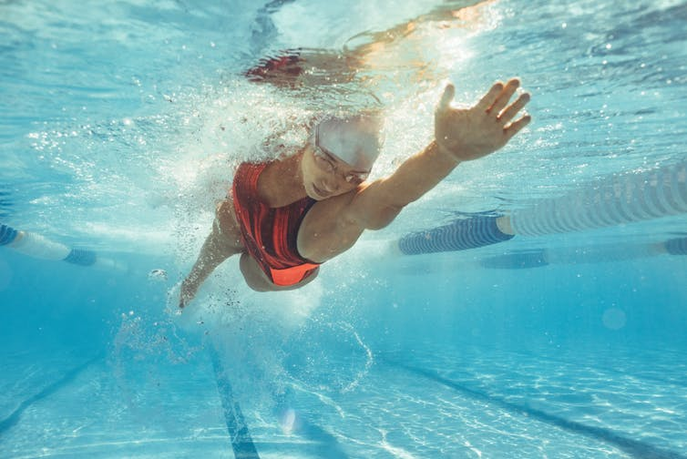A woman swims laps in a pool