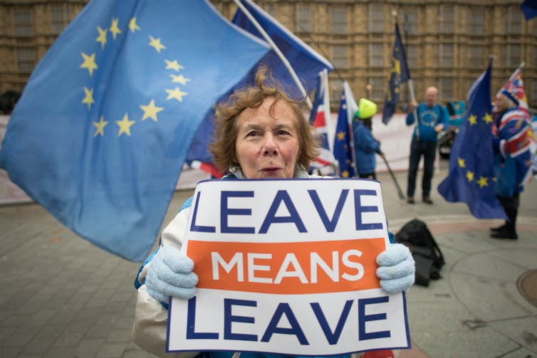 Woman with 'leave means leave' Brexit sign.