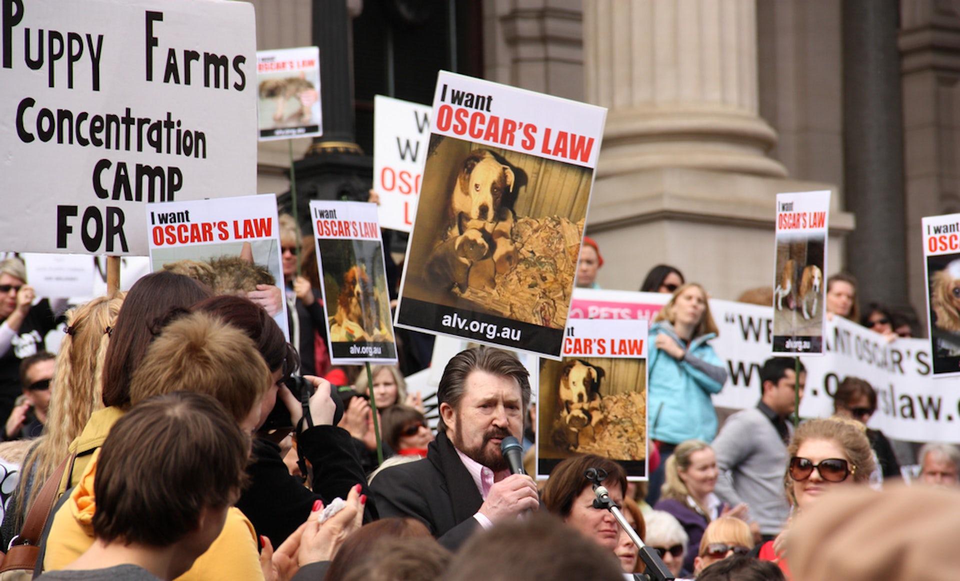 australia increasingly uncomfortable with animal cruelty