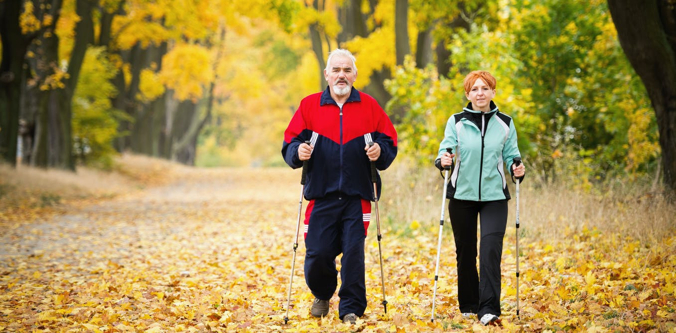 Exercise and the brain: three ways physical activity changes its very structure