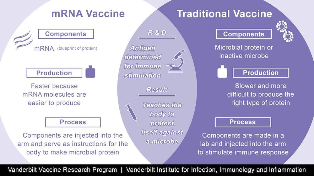 How mRNA vaccines from Pfizer and Moderna work, why they ...