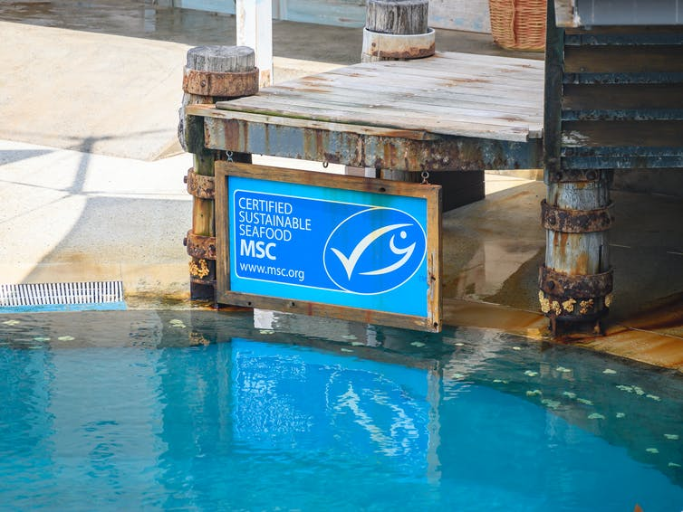 A 'certified sustainable seafood' sign next to a pool.