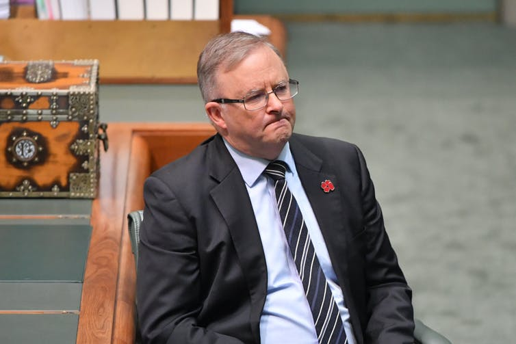 Labor leader Anthony Albanese looks glum in parliament.