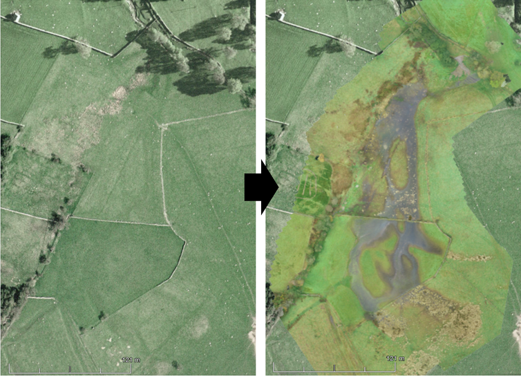 Two images depicting the transformation of farmland to wet floodplain.