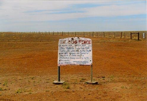 Dingo fence in South Australia.