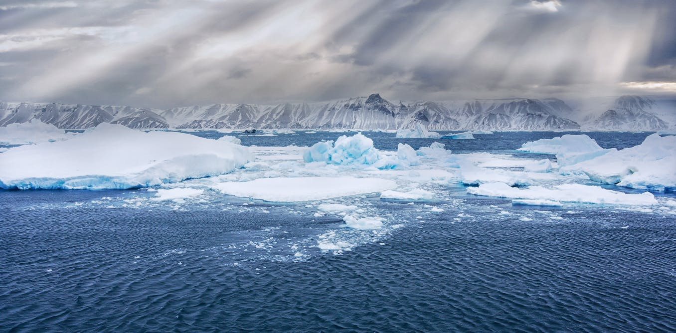 An ocean like no other: the Southern Ocean's ecological richness and significance for global climate