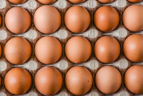 Top view of brown eggs in carton box.