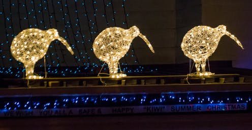 Three illuminated kiwi bird Christmas decorations.