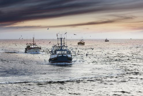 Fishing boats coming into Le Guilvinec, Brittany, France, at the end of the day