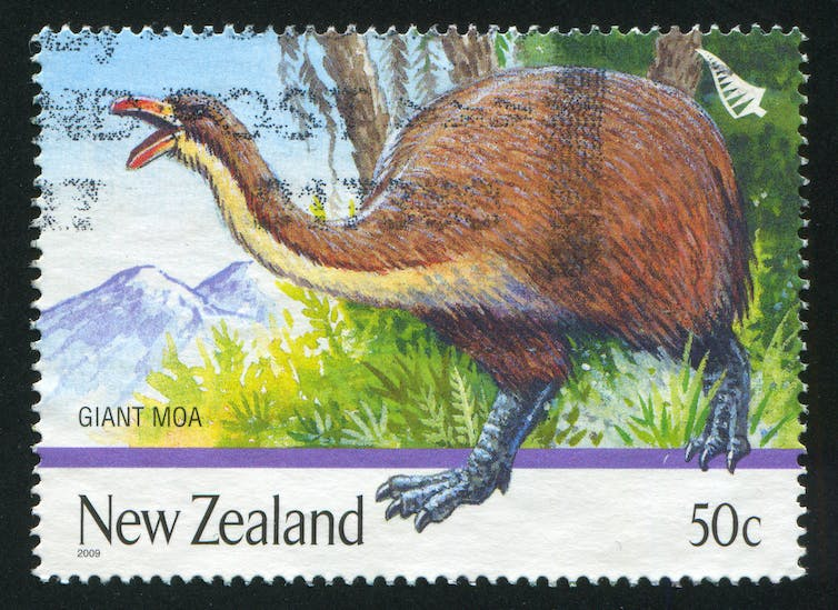 A postage stamp featuring a large flightless bird.