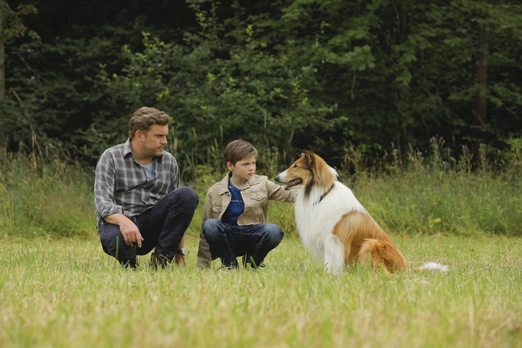 Dad, son and dog in a field.