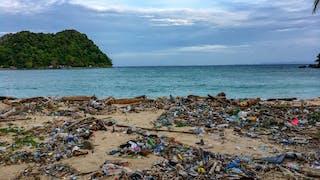 Una playa tropical sembrada de desechos plásticos.