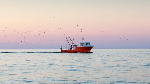 A red fishing boat bobs on a calm ocean.