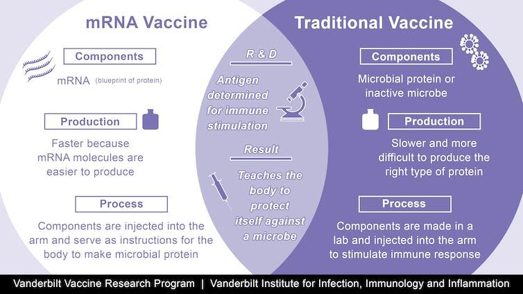 Explicación del ARNm