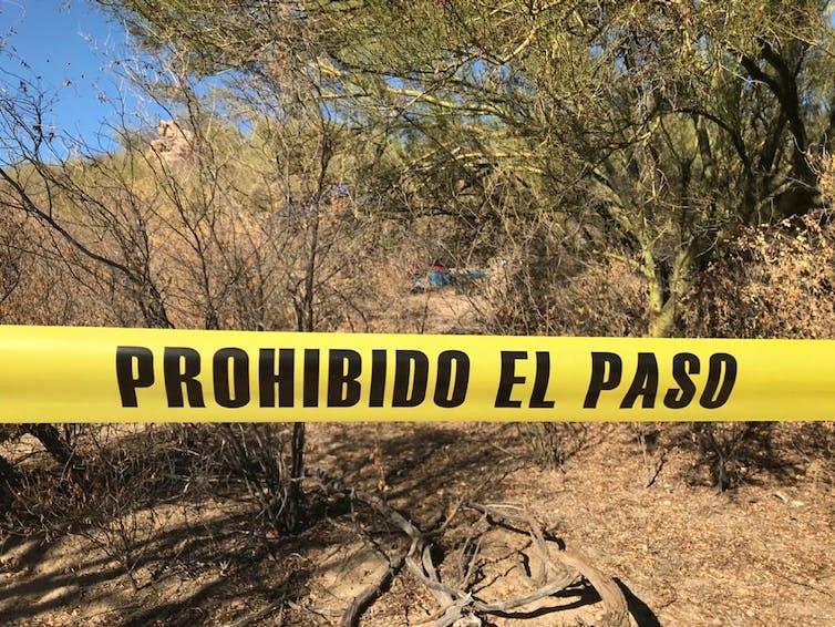 Fosas en Hemosillo (estado de Sonora, México) en noviembre de 2020.Colectivo Buscadoras por la Paz Sonora.,CC BY-SA