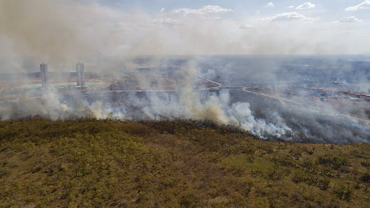 Aerial photo of a forest fire with tall buildings visible in background through smoke.