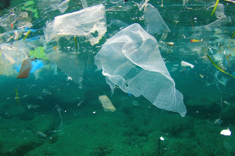 Plastic bag floats in the ocean.