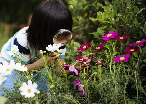 Child looking at flowers through a magnifying glass.