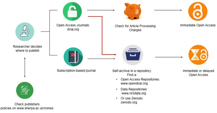 Chart showing open access publication options