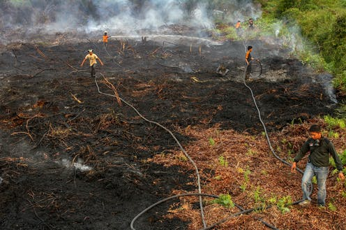 Men standing on burned peat forests holding water hoses.