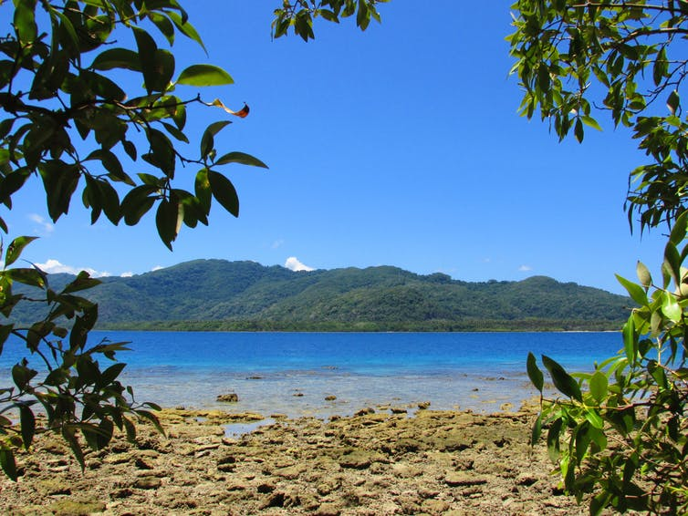 Landscape in Malekula Island