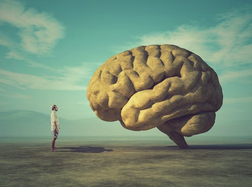 Image of a man looking at a giant rock in the shape of a brain.