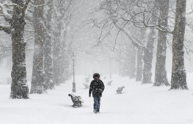 A man in a winter coat walks down a tree-lined path in a park during heavy snowfall.