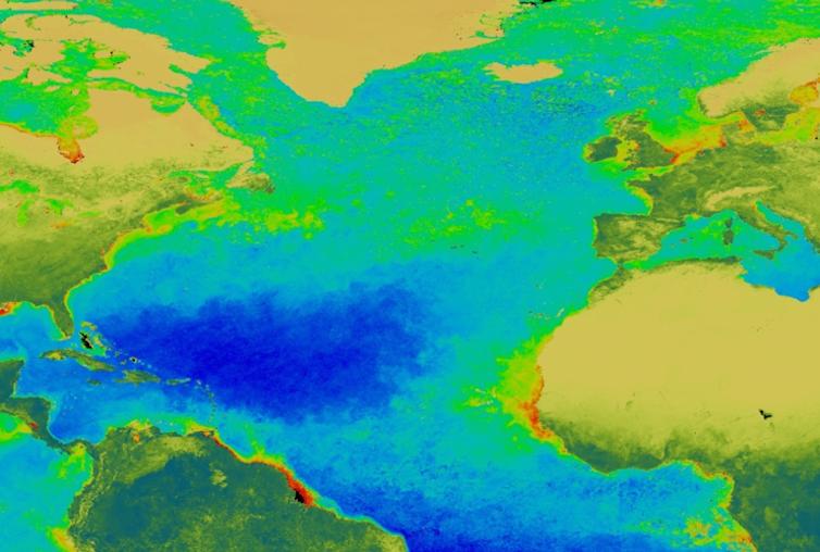 La floración primaveral de fitoplancton del Atlántico Norte es una de las manifestaciones más espectaculares de la naturaleza.NASA