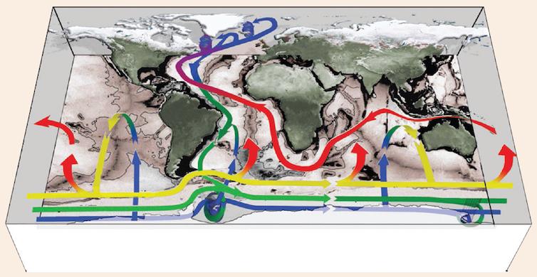 Esquema de la cinta transportadora global, con origen y final en el océano Atlántico, llegando a todo el planeta a través del océano Austral.John Marshall & Kevin Speer/ Nature Geoscience
