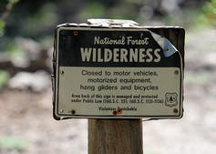 Wilderness sign in U.S. national forest